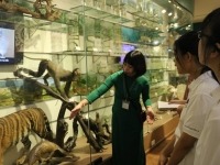 Hoạt động trải nghiệm bổ ích tại Bảo tàng Thiên nhiên Việt Nam của học sinh khối 10