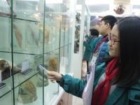 Giờ học đầy hấp dẫn tại bảo tàng sinh vật của học sinh khối 7