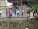 GEC: Chung tay bảo vệ hồ Hà Nội